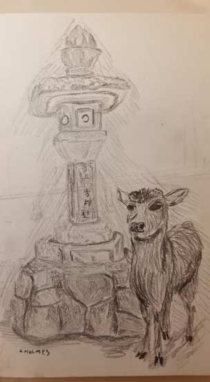 deer graphite